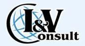 I & V CONSULT